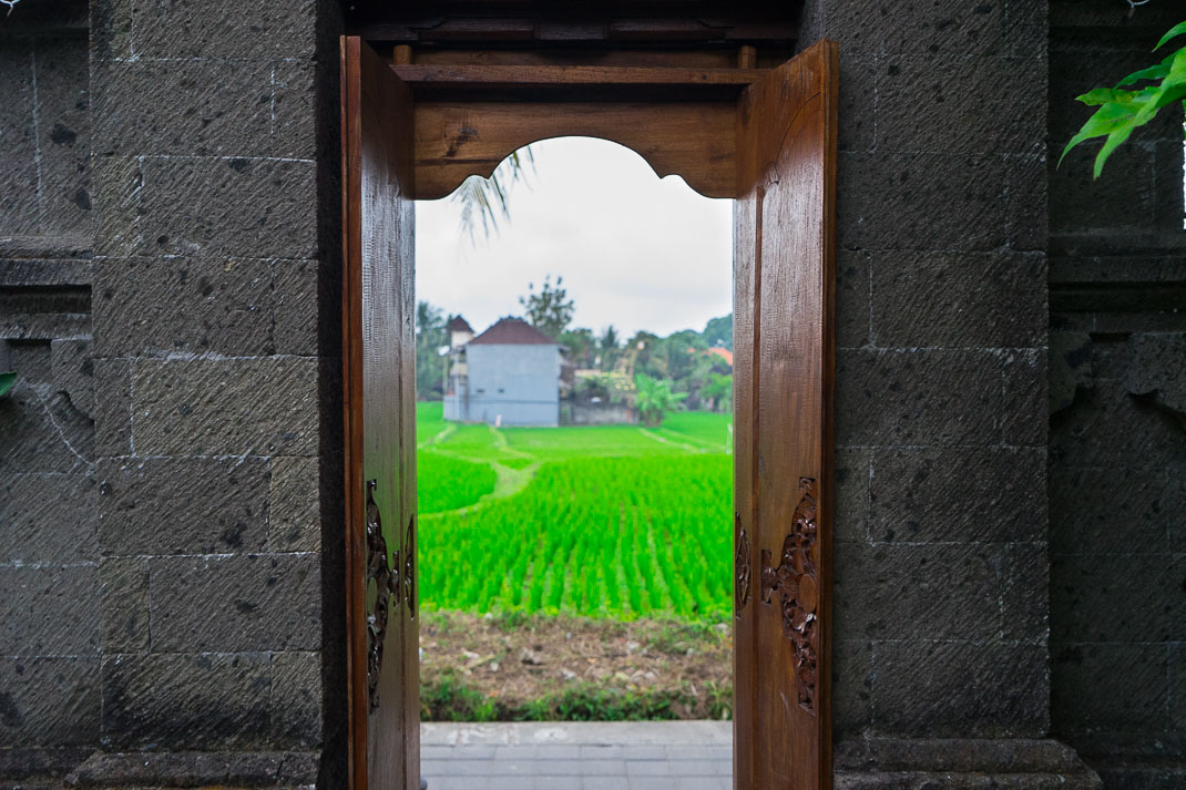 Ubud Doorway Rice Field