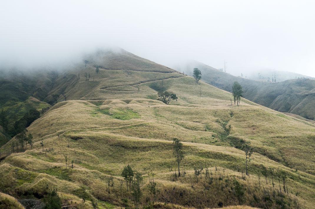 Climbing Mount Rinjani Winding path