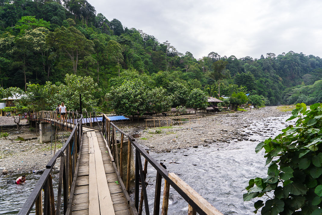 Bukit Lawang Jungle Bridge