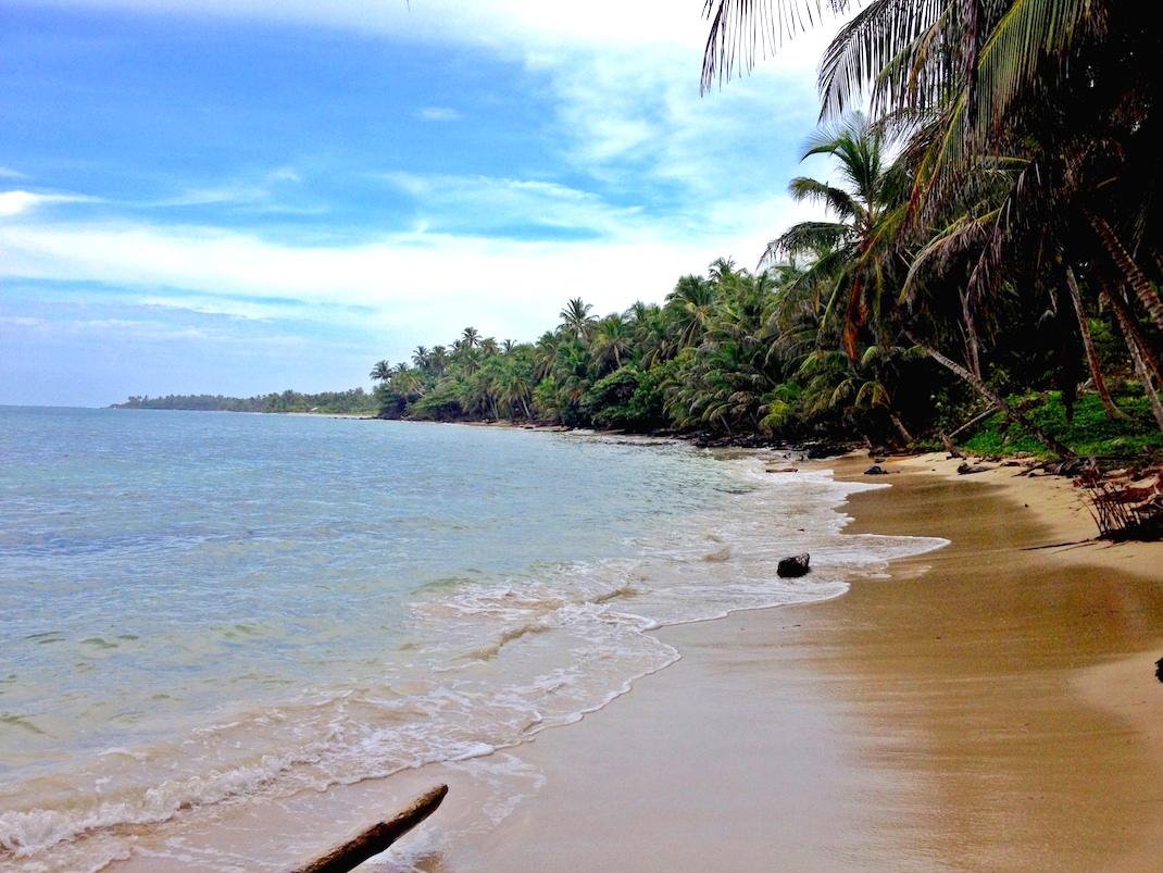 Little Corn Coconut Tree Beach