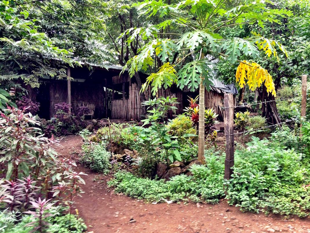 Ometepe Handmade Thatch Home