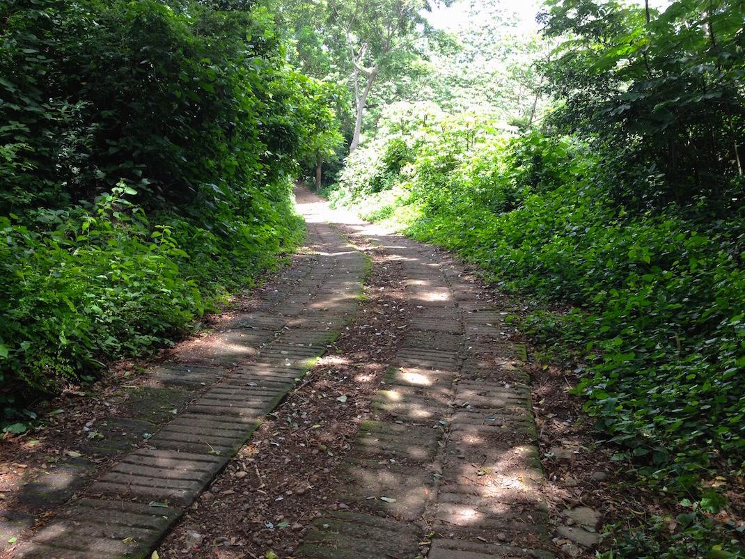 Ometepe Waterfall Paved Path