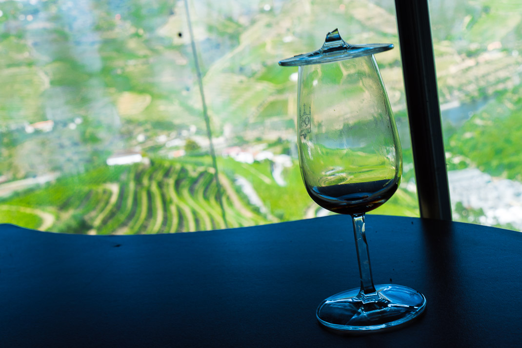 Douro Valley Wine Glass