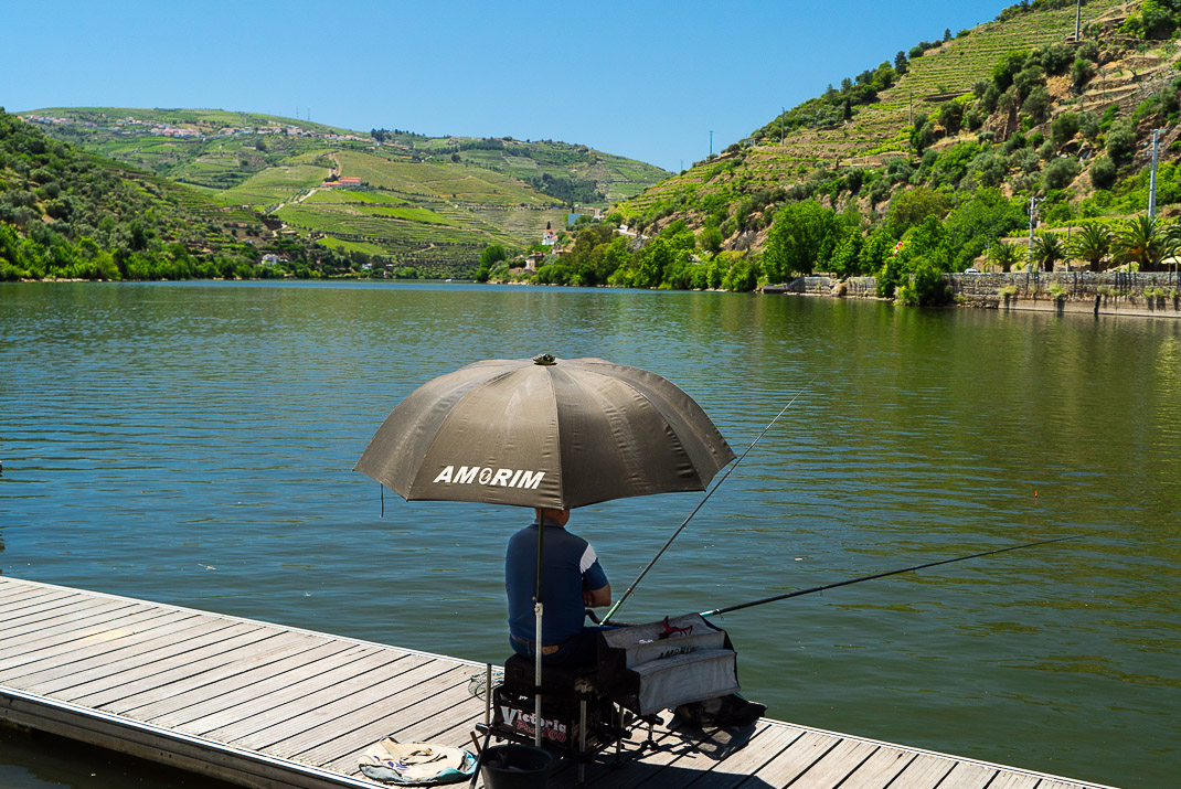 Douro Valley Fisherman