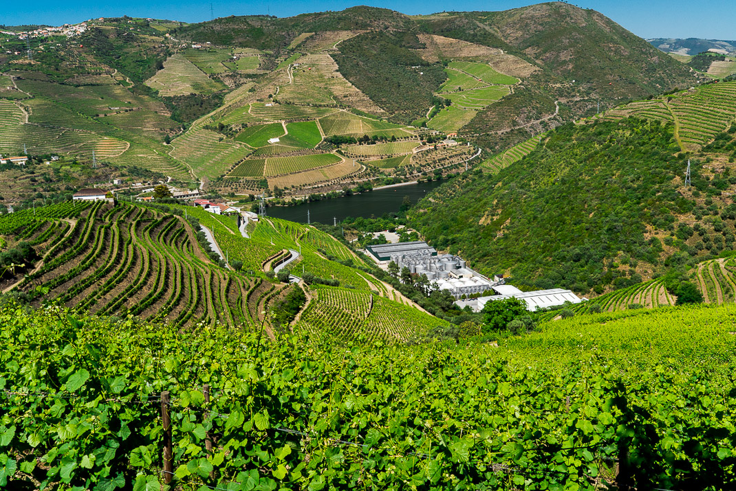 Douro Valley Processing Plant