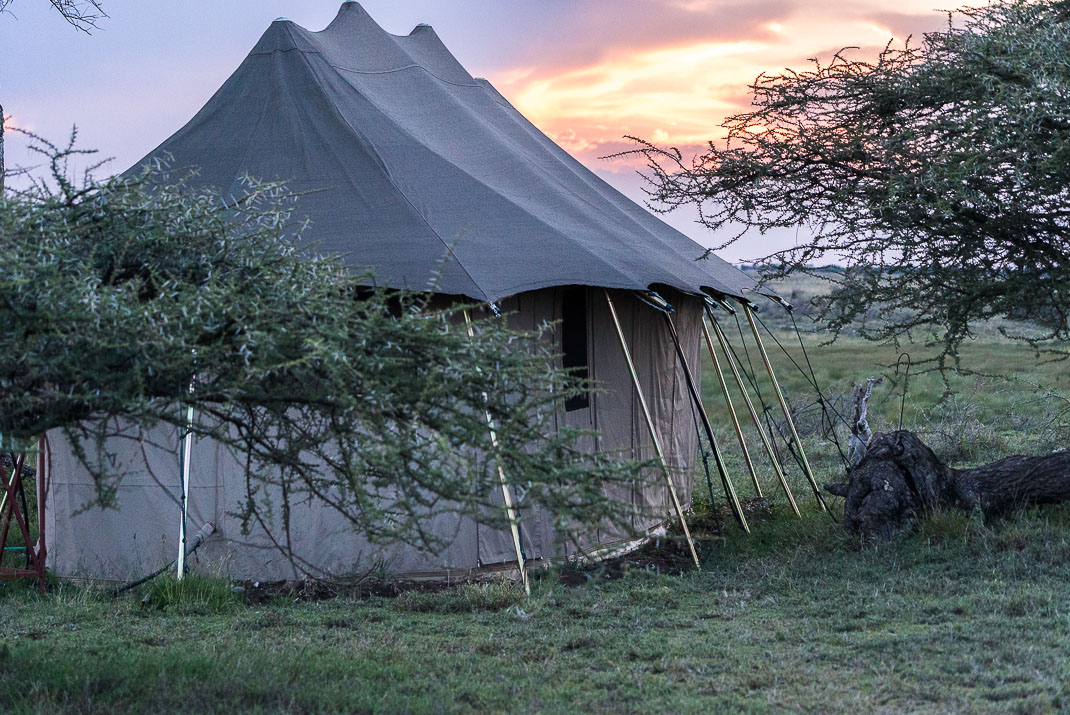 East Serengeti Namiri Tent Exterior