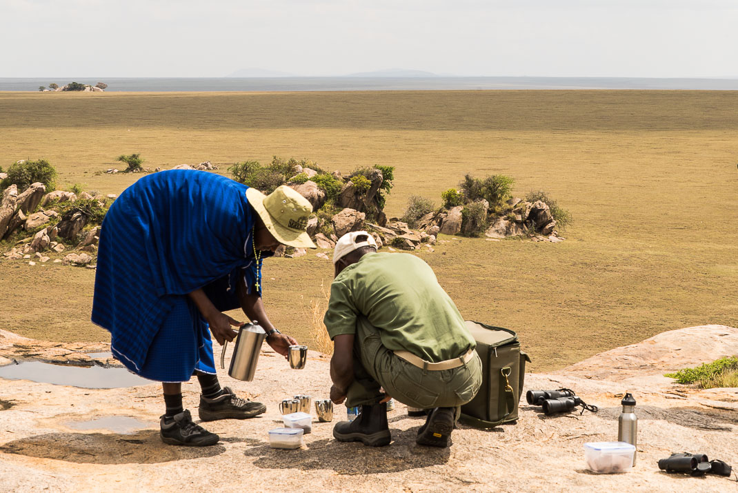Serengeti Plains Coffee Break