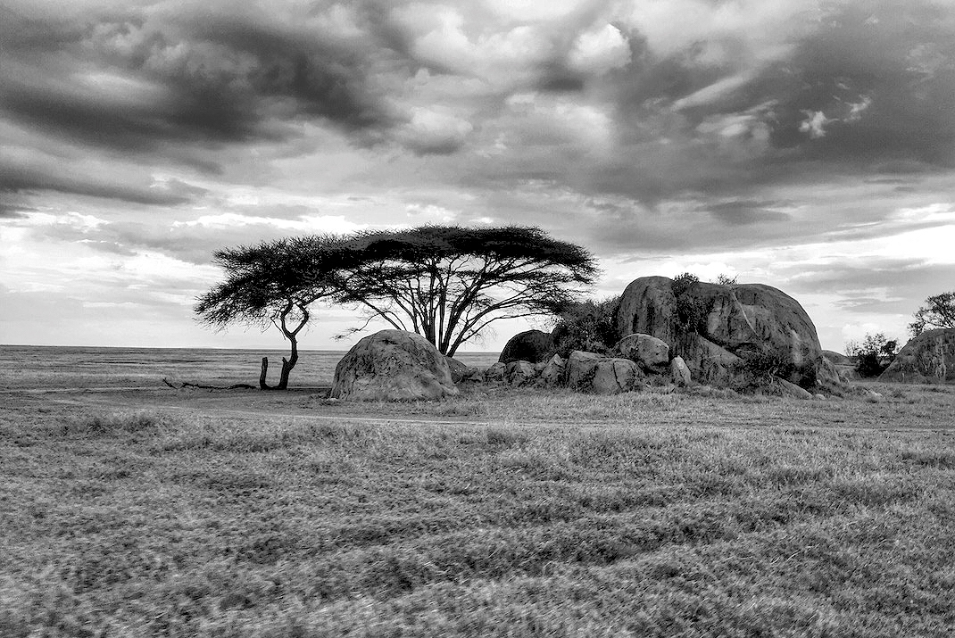 Serengeti Plains Rock Outcropping