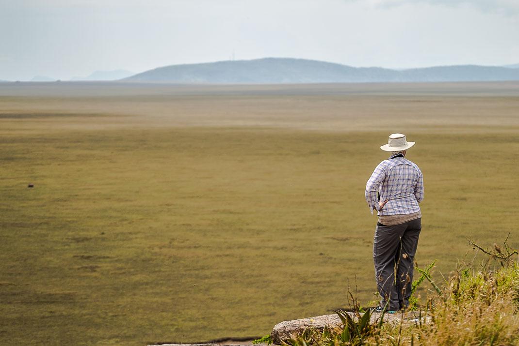 Serengeti Plains Foreground Expanse