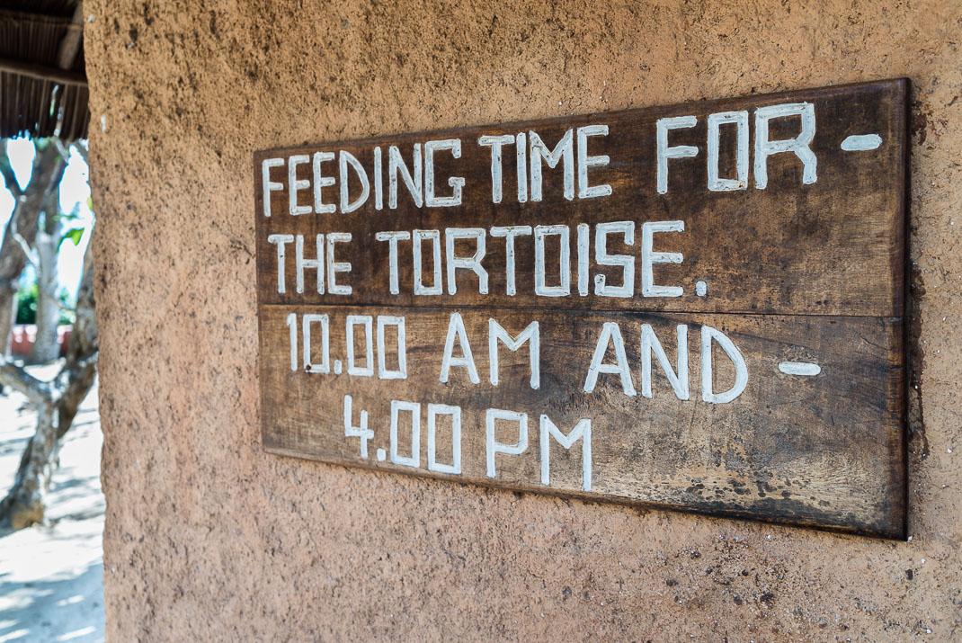 Prison Island tortoise feeding sign