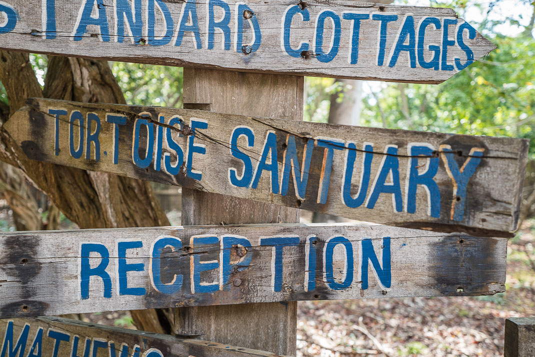 Prison Island tortoise sanctuary