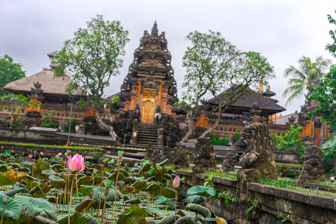 Ubud Starbucks Temple Lotus