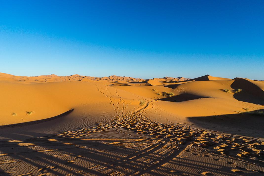 Sahara Desert Tour Sunrise Dunes