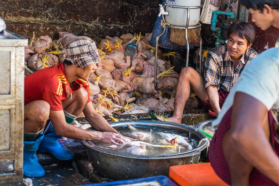 Yangon Street Market Chicken