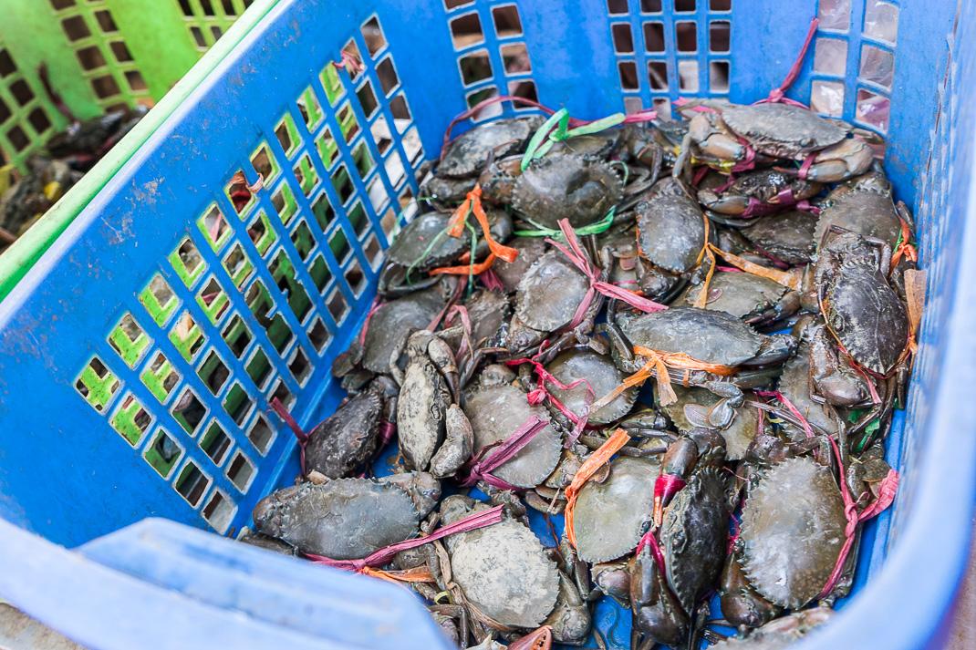Yangon-Street-Markets-Crabs